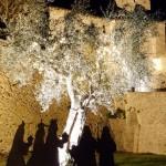 L'Adorazione dei Magi di Bartolomeo Balzoni a Montegridolfo. Natale 2019