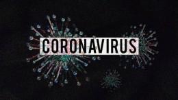 coronavirus-4923544_1920