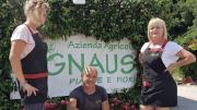 La Gnaus del Friuli per la TIN di Rimini